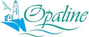 Les produits Opaline colis du 27 novembre 2014 .