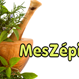 Code promo chez MesZépices.com avril 2016 .