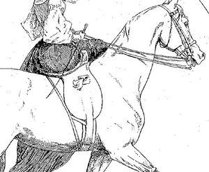 Les cavalières en amazone du Chic à cheval 2