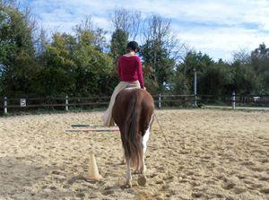 Séance cheval d'amazone!