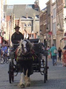 Bruges et chevaux...