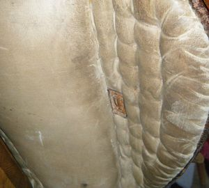 Collier de chasse et bricole selle d'amazone