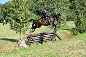 Equitation en amazone cross et sauts d'obstacles naturels