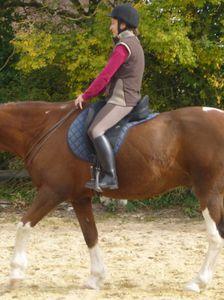 une séance d'équitation à califourchon