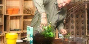 Misterbricolo fait pousser ses plantes dans une bonbonne ...