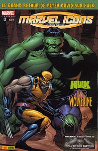 Marvel icons hors série n°3, Hulk vs Wolverine (Peter David, Lee Weeks)