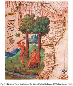 Ancienne carte du Brésil