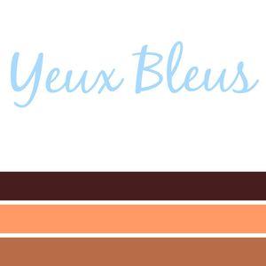 Quelle couleur de fard à paupières choisir ?