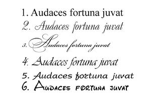 Audaces fortuna juvat