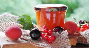 Confiture multi fruits