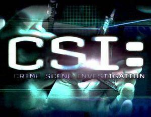 Découvrez le casting du téléfilm de conclusion de &quot&#x3B;CSI Les Experts&quot&#x3B;, diffusé le 27 septembre sur CBS