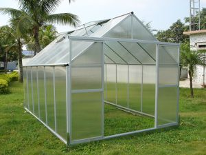 Small Polycarbonate greenhouse