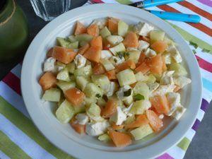 SALADE fraîche concombre melon mozzarella