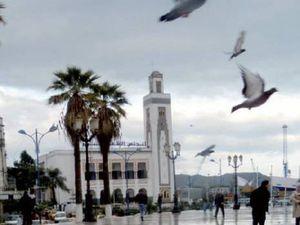 Le souk des oiseaux à Skikda .Par Mouats Hafid.