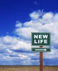 New life here
