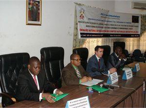 Atelier de présentation des comptes nationaux définitifs 2010