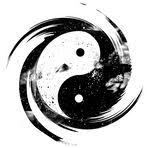 PROCHAINS STAGES QI GONG