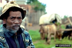 Ingahy Zà : La charrette avant les bœufs