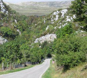 Commune d'Antabaoka – 19 Voi de la forêt de Tapia et Union Maitso