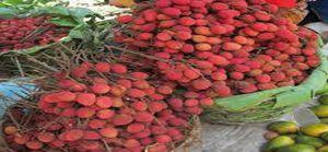 Litchis de Madagascar - Début de la fin de saison