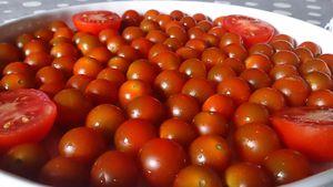 tarte tatin aux tomates cerises, chèvre crémeux et basilic
