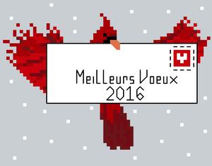 Mes vœux pour 2016