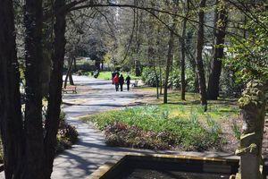 un petit air de Central Parc dans le parc de Procé