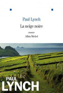 Albin Michel 2015 - 300 pages - traduit de l'anglais (Irlande) par Marina Boraso