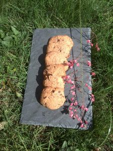 cookies au beurre de cacahouette et pépites de chocolat