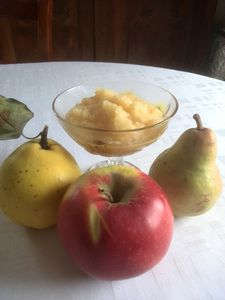 compote pomme poire coing