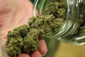 Condamnations à 5 et 7 ans de prison pour trafic de cannabis à Sevran