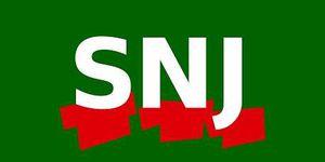 Elections à la carte:  36 317 raisons de voter SNJ