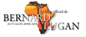 L'Afrique Réelle N°63 - Mars 2015
