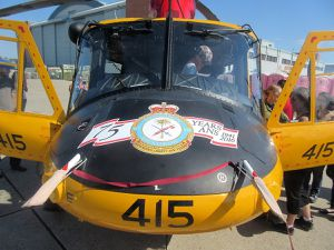 Bell CH-146 &quot&#x3B;Griffon&quot&#x3B; - 4th wing - 417 Combat Support Squadron - 75th anniversary
