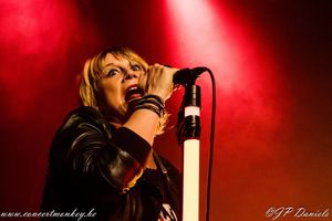 Rock For Life festival ( contre le cancer) - Cité Culture - Laeken, le 14 novembre 2015