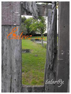 La cabane au fond du jardin !!!!......