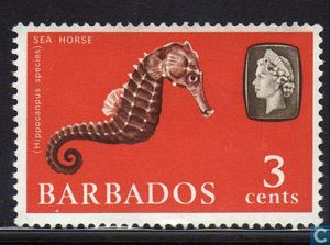 Timbre hippocampe Barbade 1965