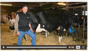 Jean Bernard Girard (Haut Doubs), meilleur éleveur Holstein français 2015