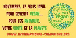 14/11: Stand pour le Mois Mondial Végane à Angers