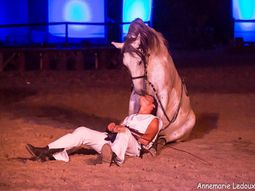 &quot&#x3B;Le Médaillon d'Epona&quot&#x3B;, Grand Spectacle Equestre