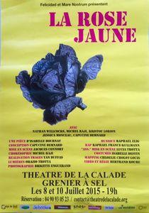 La rose jaune à Arles