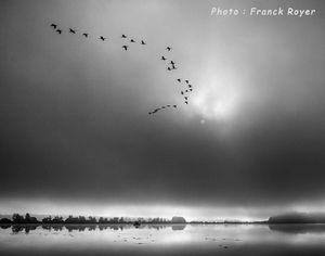 Le marais d'Orx par Franck Royer