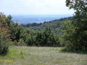 Couchey, plateau de la montagne, combe Vaulon