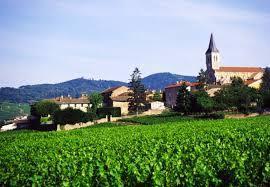 Julienas Producers Beaujolais Region France page 2