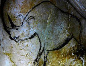 Visite à la Caverne du Pont d'Arc
