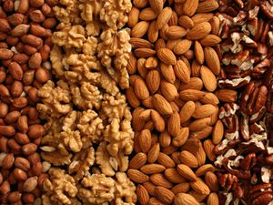 The Paleo Diet Nuts can Help curb acidity and weight