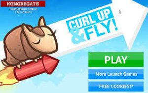 Curl Up and Fly Game