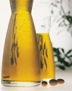 Benefits of Moroccan Argan Oil