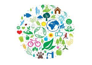 Notre vision de l'environnement