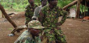 CENTRAFRIQUE:DES BARRIÈRES ÉRIGÉES PAR LES ÉLÉMENTS DE LA LRA DANS LA HAUTE-KOTTO